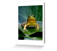 You Looking At Me? Greeting Card