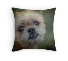 Who You Calling Funny Looking? Throw Pillow