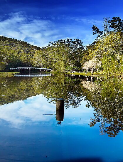 Reflections by Mark  Lucey