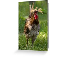 Punk Rock Rooster Greeting Card