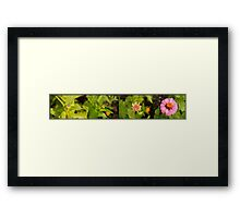 At every stage  Framed Print