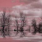 Summer Pink ! by Elfriede Fulda