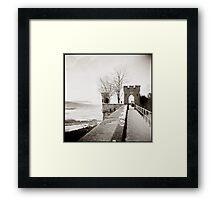 { crisp view } Framed Print