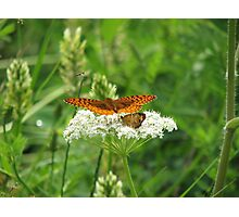Landing Zone Photographic Print