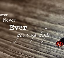 Never Ever... by CarlyMarie
