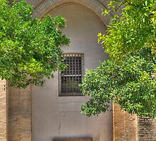 the bench by LaquelW