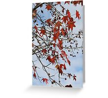 Autumn Colours Greeting Card