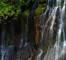 Though The Walls May Weep by Tula Top