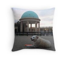 Crackers in The Park Throw Pillow