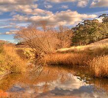The Flow #2 - Oberon NSW -  The HDR Experience by Philip Johnson