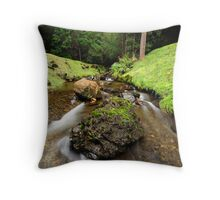 Downstream from Strickland Falls Throw Pillow