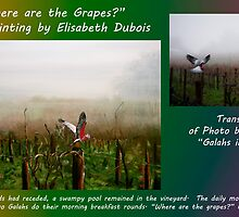 where are the grapes translation card by Elisabeth Dubois
