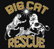 Big Cat Rescue by icool