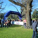 Run Melbourne Kids 3km Run Starting Gate. by wyvernsrose