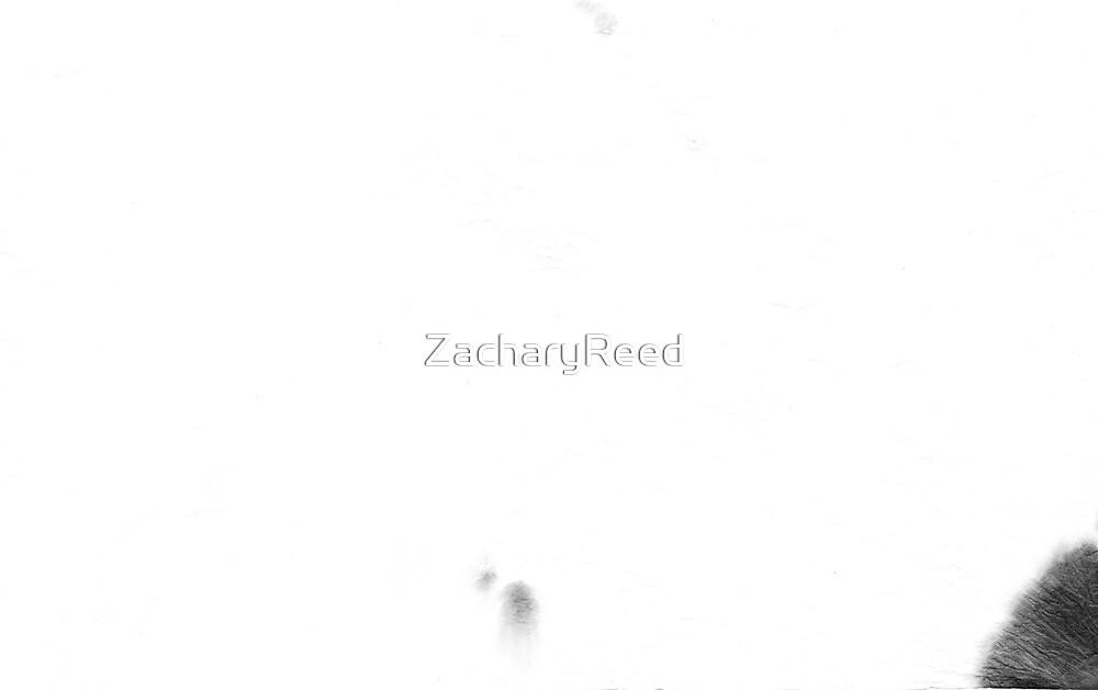 00049.2 by ZacharyReed