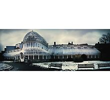 Belfast Botanical Gardens N.I Photographic Print