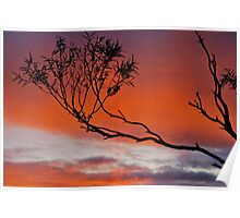 Echo Point Sunset. Poster