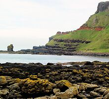 Giants Causeway Beachscape by sparky178