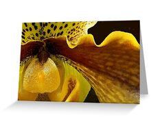 Orchid in Yellow Ochre Greeting Card