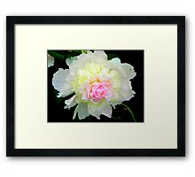 True Beauty © Framed Print