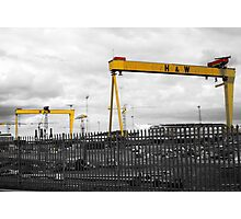 Harland and Wolff Photographic Print