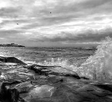 Lake Erie's Wrath by Marcia Rubin