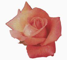 Peachy Rose One Piece - Long Sleeve