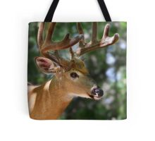 As smooth as velvet - White-tailed Deer Tote Bag