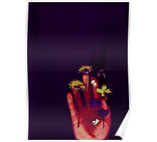 More Pressed Flowers Poster