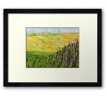 Misty Valley Framed Print