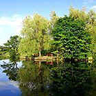 Reflection by the pond  by shelleybabe2