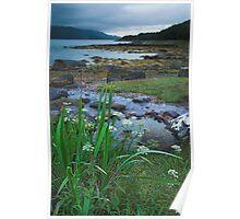 Taynish by Tayvallich Argyll Poster