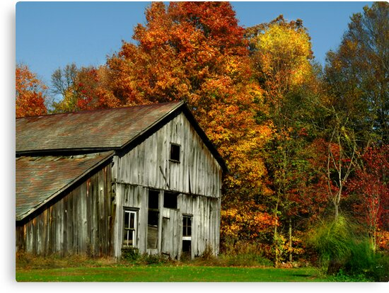Simply Country by Marcia Rubin
