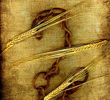 Barley and Chain by Anki Hoglund