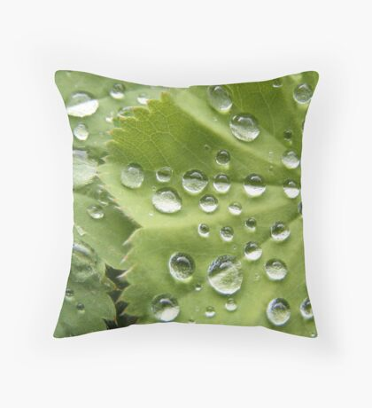 Rain Drops on a Scottish Summer Morning Throw Pillow