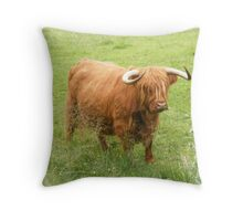 Highland Cow, Fort Augustus Throw Pillow