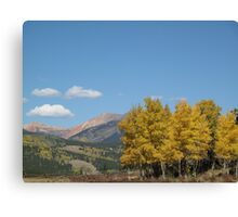 splendor in the pass Canvas Print