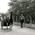 The Journey To Appleby Fair. by Lou Wilson