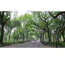 Summer Rain in Central Park Photographic Print