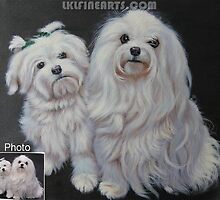 Dog oil portrait painting from photograph by jackie leung