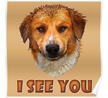 I see you ... Poster