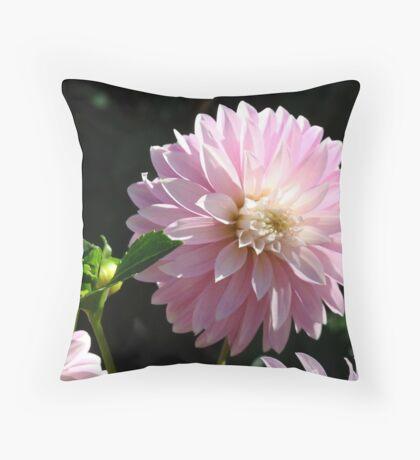 Dahlia Flower Garden art prints Pink Dahlias Floral Throw Pillow