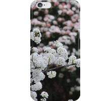 Spring's Blushes iPhone Case/Skin