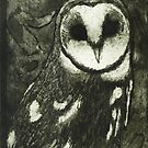 My Barn Owl by Danielle Cardenas
