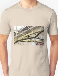 blackbird on tree Unisex T-Shirt