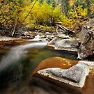 American Fork River - Rock by Ryan Houston