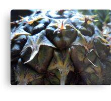 pineapple butt Metal Print
