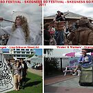 Skegness SO Festival 2011 by Stephen Willmer
