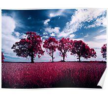 Aero infrared trees Poster