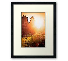 Sun and Roses. Framed Print